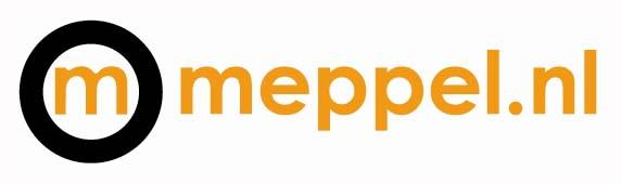 Directeur Gemeente Meppel